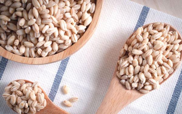 このこのごはん大麦